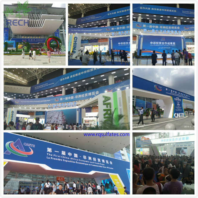 The First China-Africa Economic and Trade Expo opened in Changsha