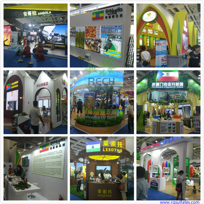 China-Africa-Economic-and-Trade-Expo2